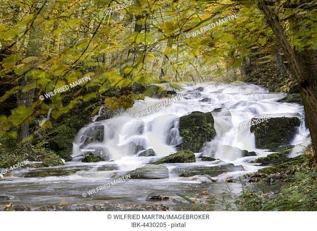Selke Waterfall, autumn forest, Selketal, Südharz, Lower Saxony, Germany