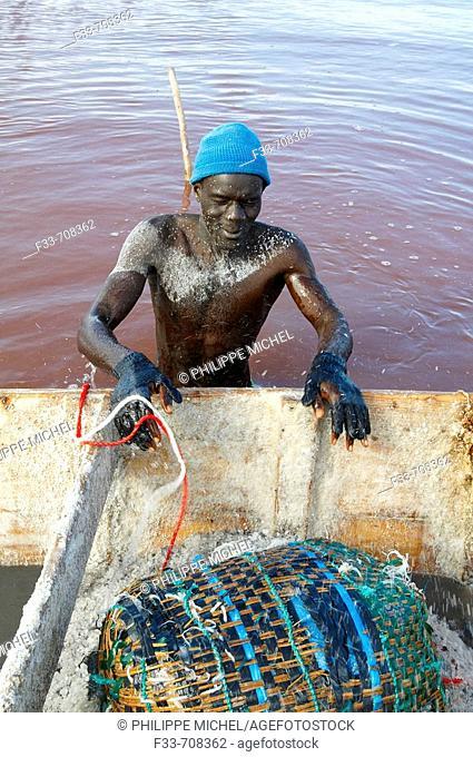 Senegal, Redba salt lake or Pink Lake. Salt collect