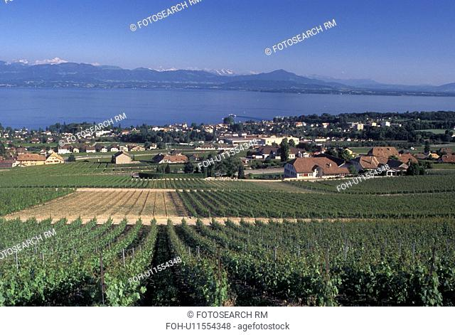 Switzerland, La Cote, vineyard, Lake Geneva, Rolle, Vaud, Scenic view of the countryside covered with vineyards and the village of Rolle along Lac Leman in the...
