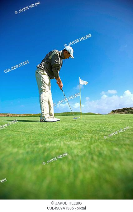 Low angle full length side view of golfer putting