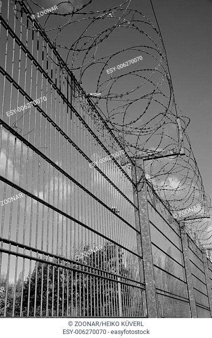 Barbed wire on a fence