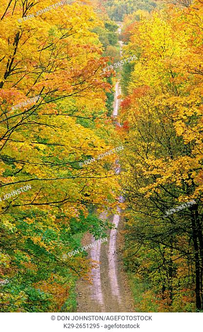 A country road in autumn, Manitoulin Island, Ontario, Canada