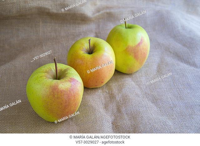 Three apples. Still life