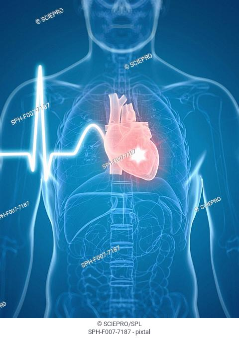 Heart beat, computer artwork