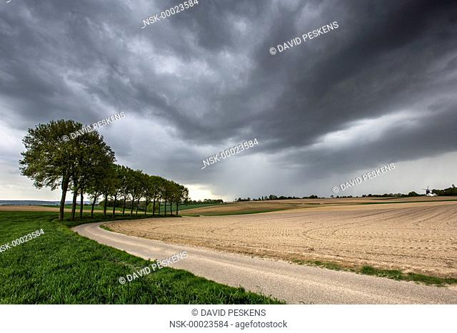Storm arrives in a hilly landscape, The Netherlands, Limburg