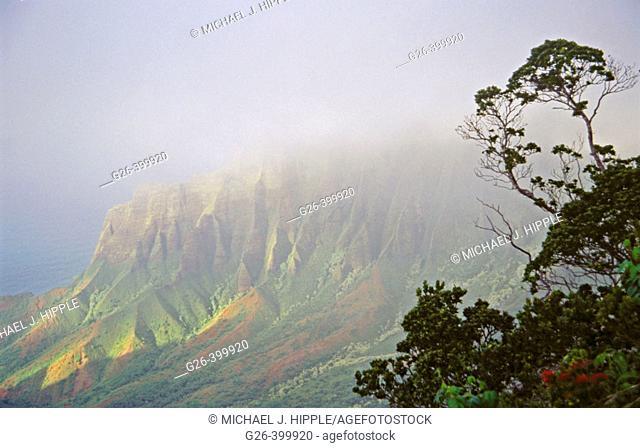 Kalalau Valley. Na Pali Coast, Island of Kauai, Hawaii