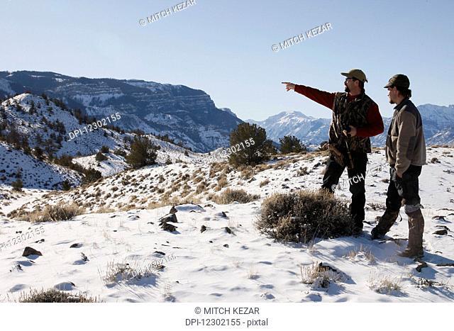Cougar Hunters Houndsmen Tracking Cougar