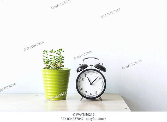 flowers and alarm clock on a white wall shelf