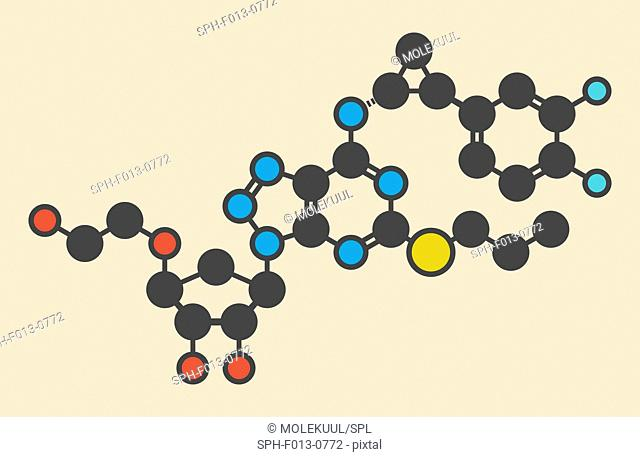 Ticagrelor platelet inhibitor drug. Used to prevent thrombosis. Stylized skeletal formula (chemical structure). Atoms are shown as color-coded circles: hydrogen...