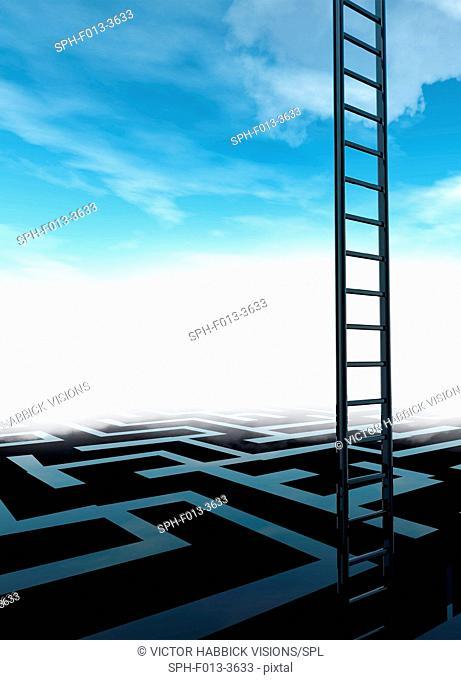 Ladder and maze, illustration