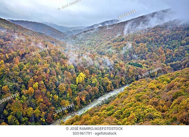 Rio Irati en el valle de Aezkoa  Navarra  España