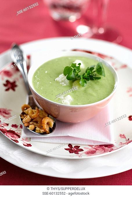 Avocado and cress soup