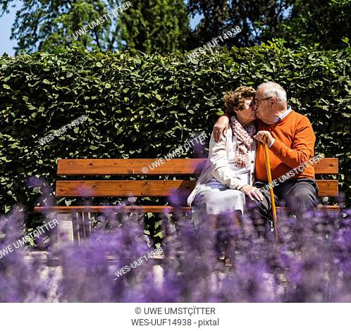 Senior couple sitting on bench in a park, kissing