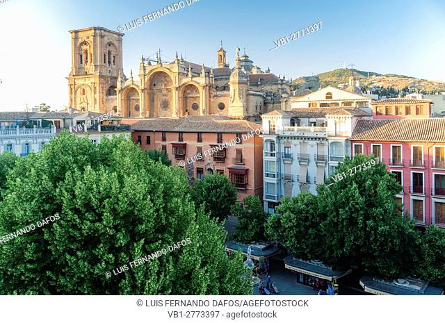 Elevated view of Cathedral and Bib-Rambla square in Granada, Andalusia, Spain