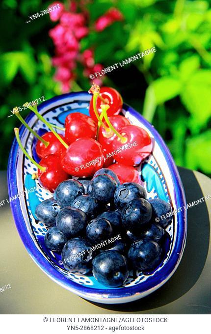 Grosse myrtille bleuet en comparaison avec cerise