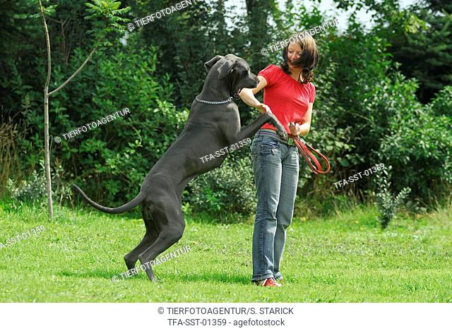 woman with great dane