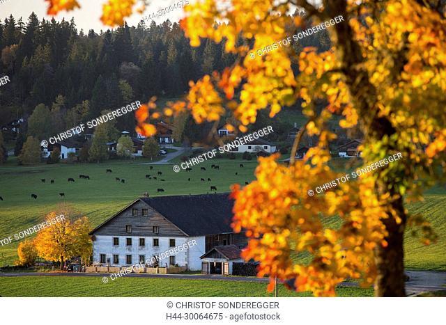 Jurassisches Bauernhaus bei La Chaux-du-Milieu