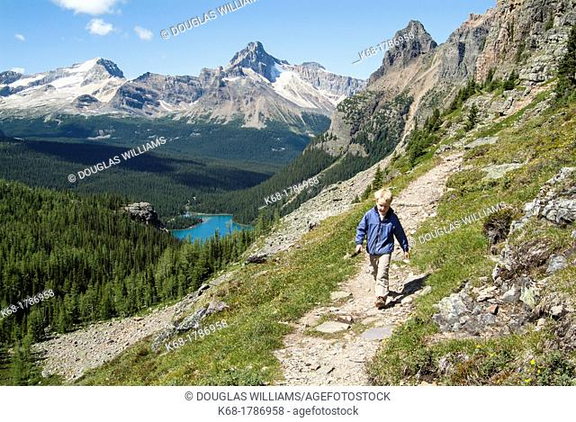 A nine year old boy hikes in the Lake O'Hara area of Yoho National Park, British Columbia, Canada