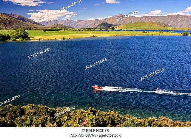 Waterskier on Lake Wanaka at Glendhu Bay, Central Otago, South Island, New Zealand