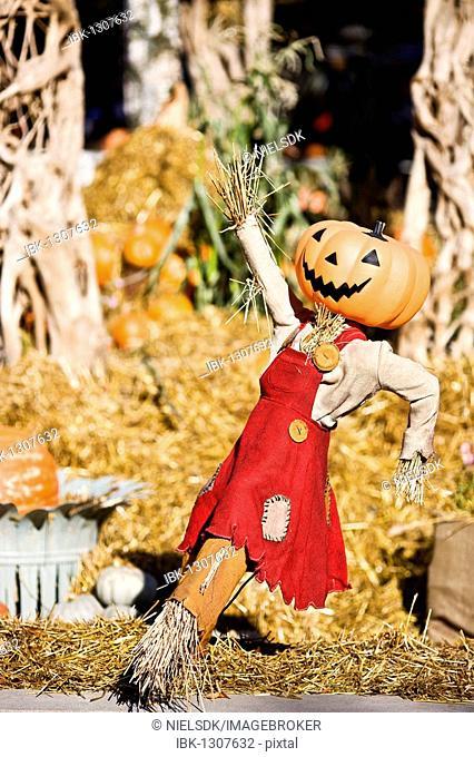 Halloween scarecrow in Tivoli, Copenhagen, Denmark, Europe
