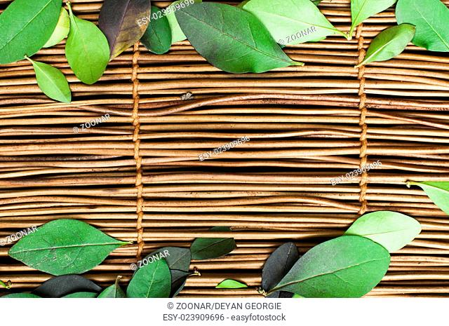 Wooden background and leafs