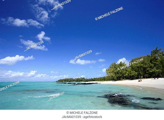 Beach and Casuarina Trees, Ile aux Cerfs, Mauritius, Indian Ocean