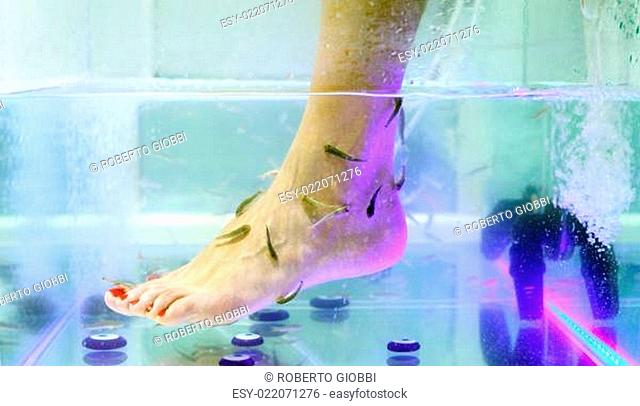 Foot fish care