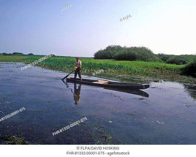 Poland Man on boat / Narew River / Biebrza Marshes