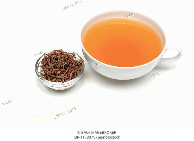 Medicinal tea made of the dried roots of the medicinal plant Aster tataricus (Aster tataricus), Purple Aster Root, Zi Wan