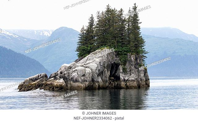 Trees on rocky island