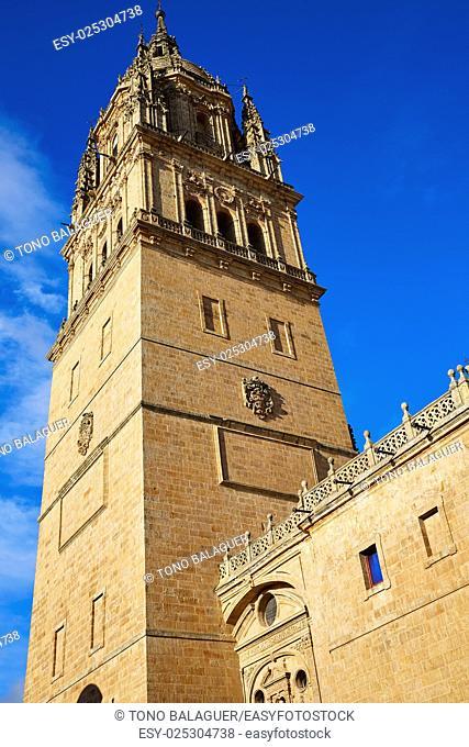 Salamanca Cathedral in Spain by the Via de la Plata way to Santiago