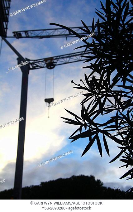 silhouette of crane on building site
