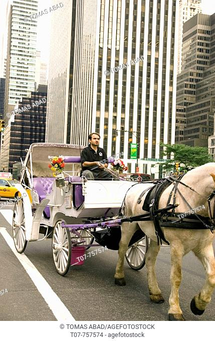 New York City - 59th Street & 5th Avenue Central Park South Next to The Plaza Hotel - See picturesque and romantic Central Park on a horse-drawn carriage  All...