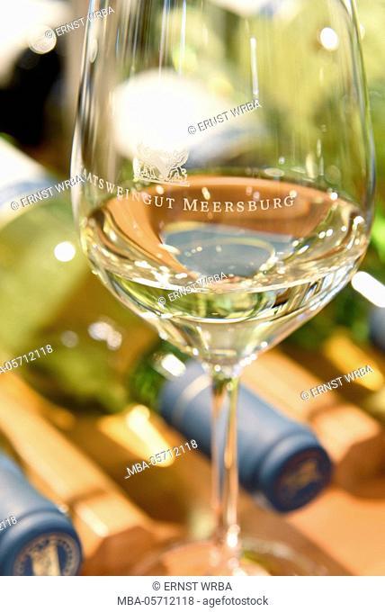 Wine state vineyard Meersburg, Meersburg, Lake of Constance, Baden-Wurttemberg, Germany