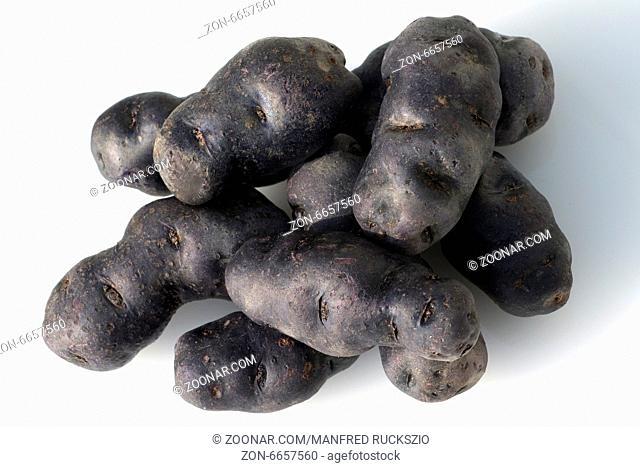 Blauviolette, blaue, Kartoffeln, Vitelotte