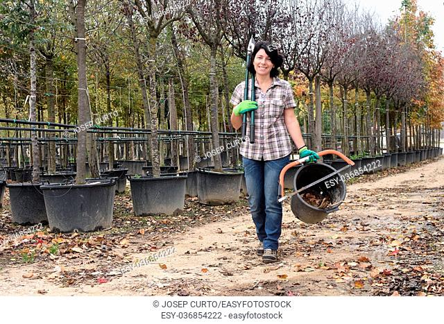 woman working in the garden center,