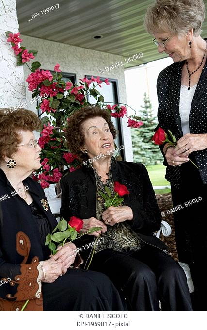 Three Women Talking And Holding Single Red Roses; Edmonton, Alberta, Canada