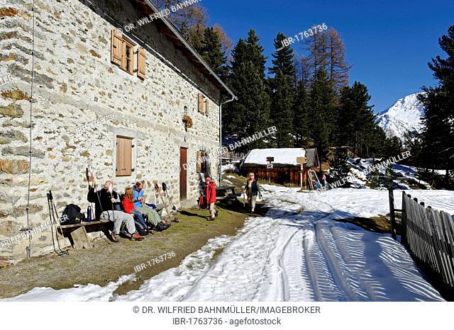Lyvialm alp, Stelvio National Park, Val Martello, Vinschgau, Southern Tyrol, Italy, Europe