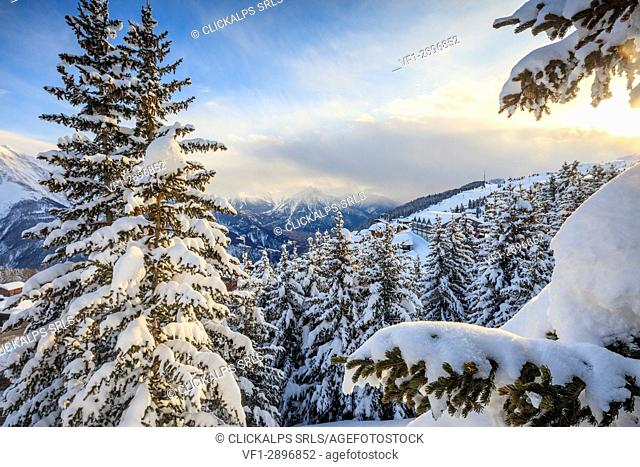 Snowy woods and trees framed by the winter sunset Bettmeralp district of Raron canton of Valais Switzerland Europe