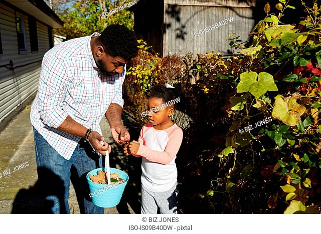 Father and daughter collecting leaves in bucket