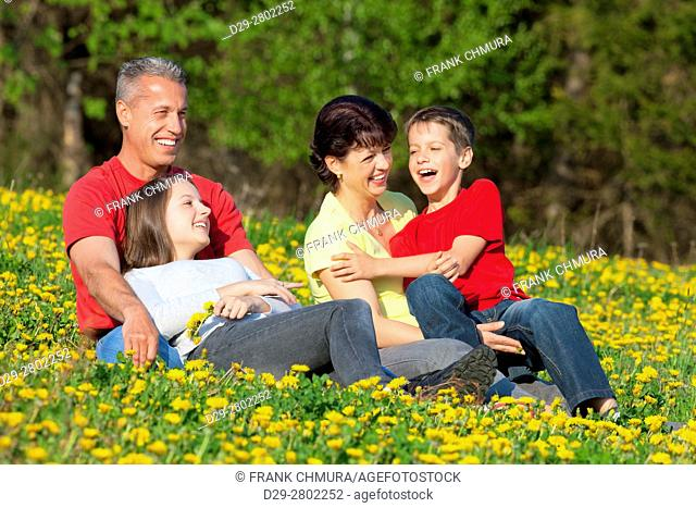 happy family of four sitting outdoors at dandelion field in spring