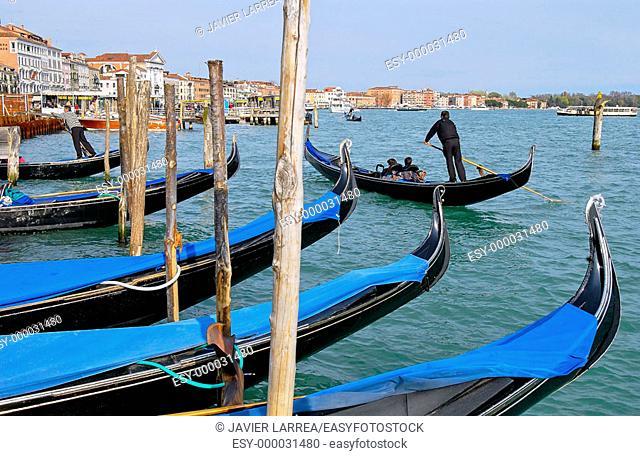 Gondolas. Venice. Veneto, Italy