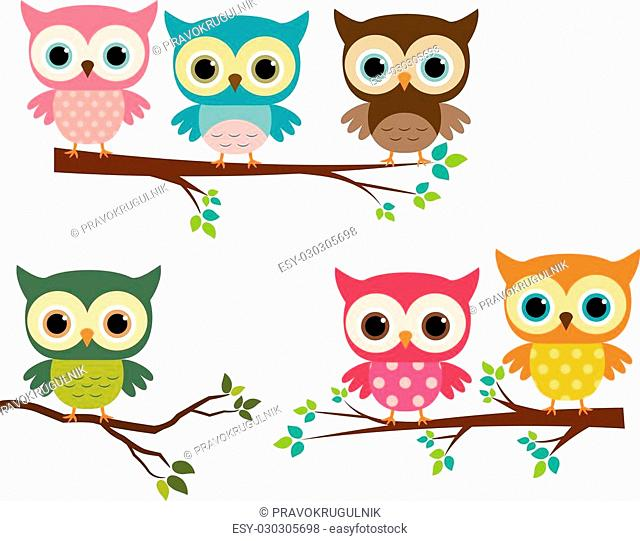 Vector set of cartoon owls in different colors and branch silhouettes in flat style