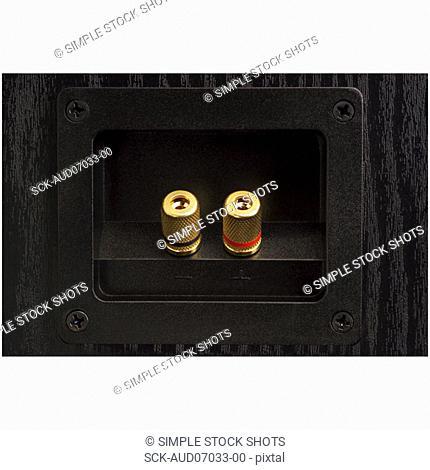 speaker jacks