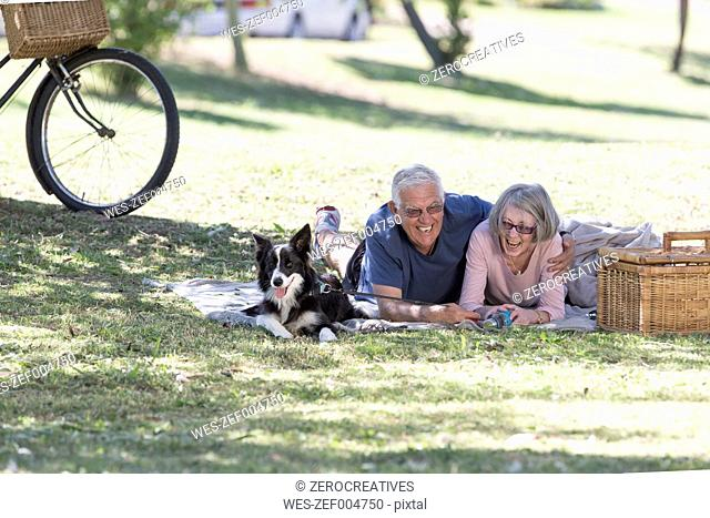 Laughing senior couple lying with dog on blanket on a meadow