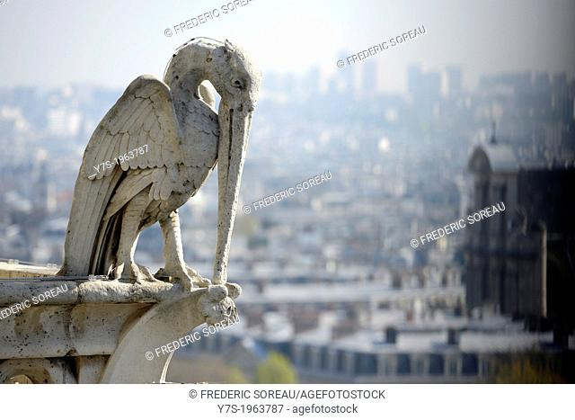 Gargoyle on the top of Notre-Dame de Paris in Paris,France,Europe