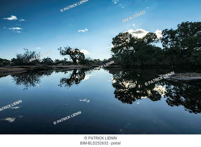 Reflection of trees and blue sky in still lake